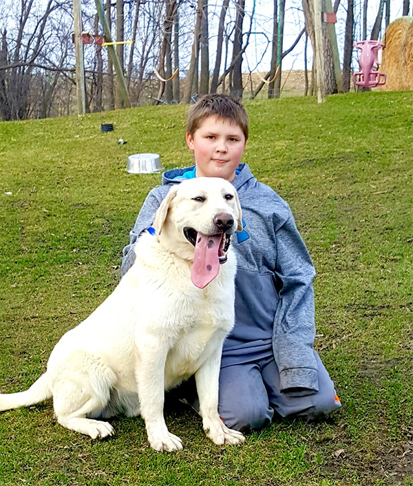 Son with one of the labs